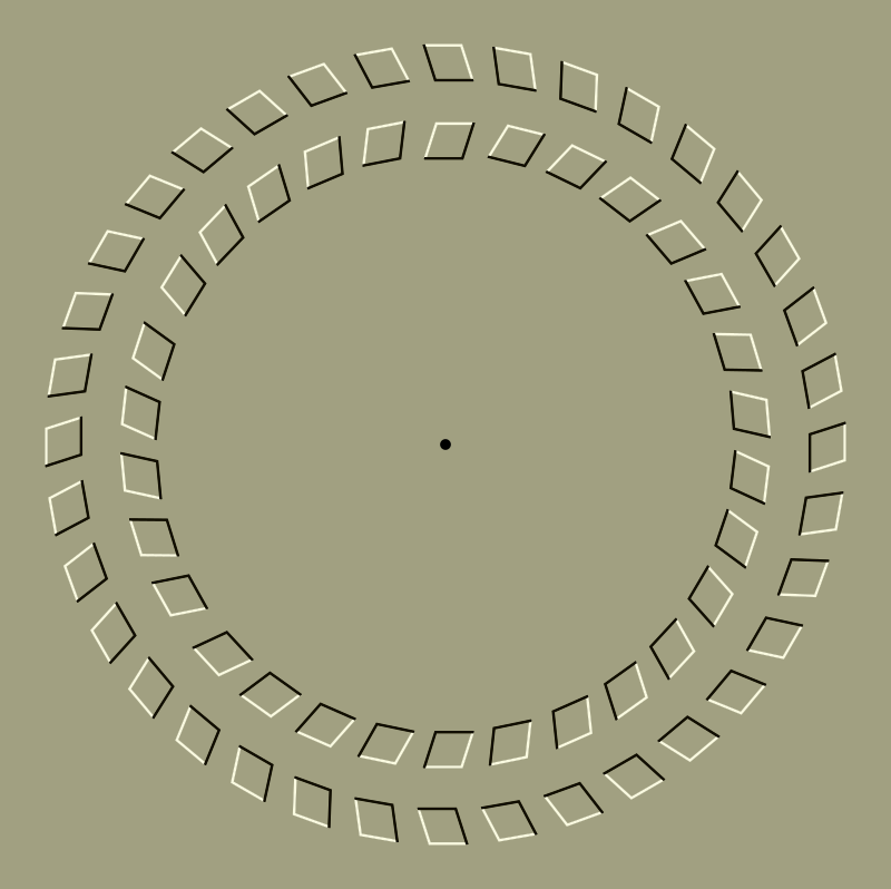 Optical Illusion 2 by gustavorezende - Fix your eyes on the black dot and move your head closer and further to see it spin.