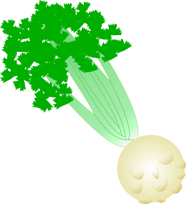 Celery with root by Solipse - This is a celery with root very simplified.