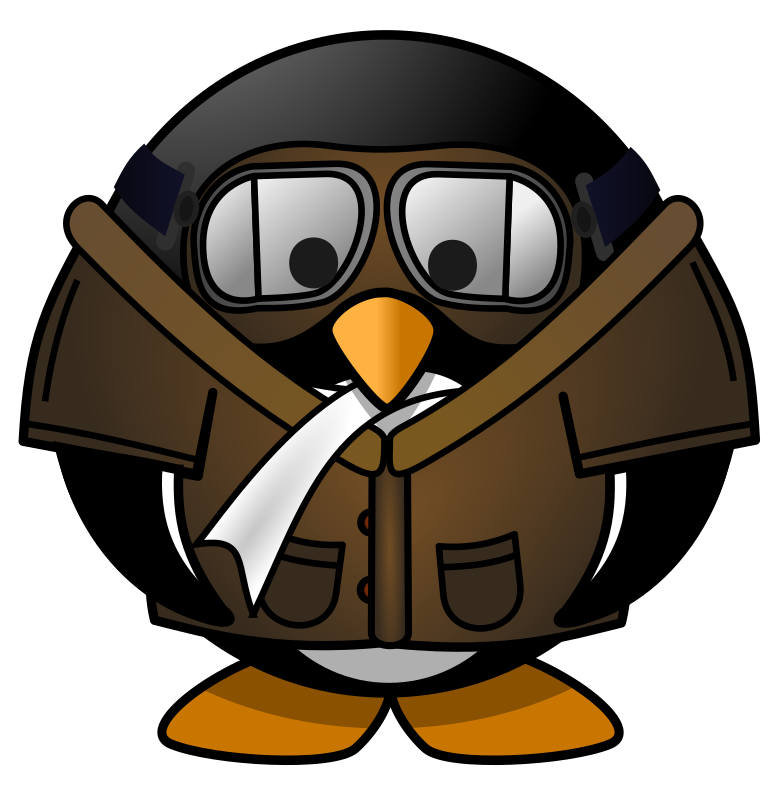 Pilot Penguin by osotogari - ... who said that penguins are flightless birds ?