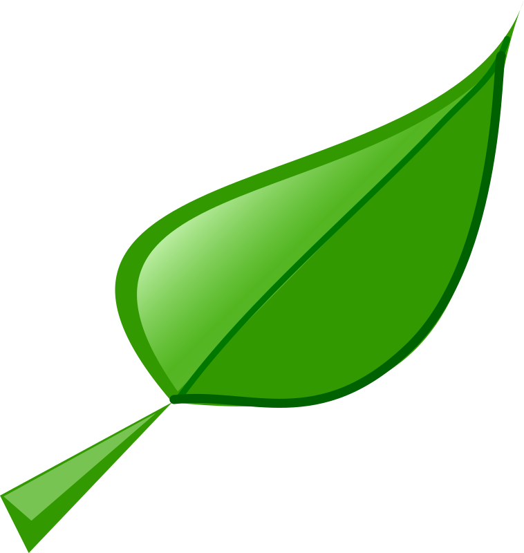 Leaf by Fredoguy - This is a leaf I made in Inkscape.
