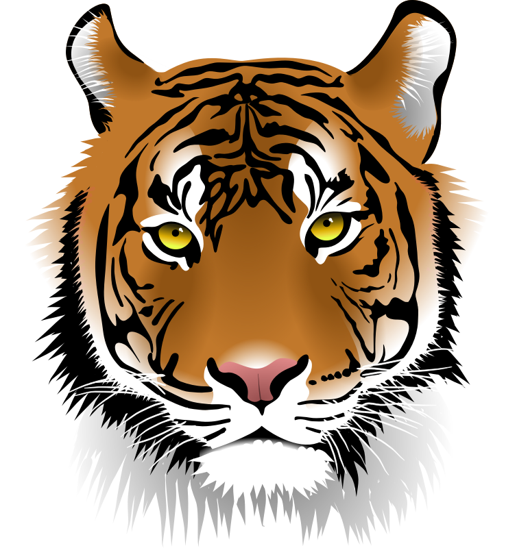 Tiger Face by microugly - Very realistic tiger face