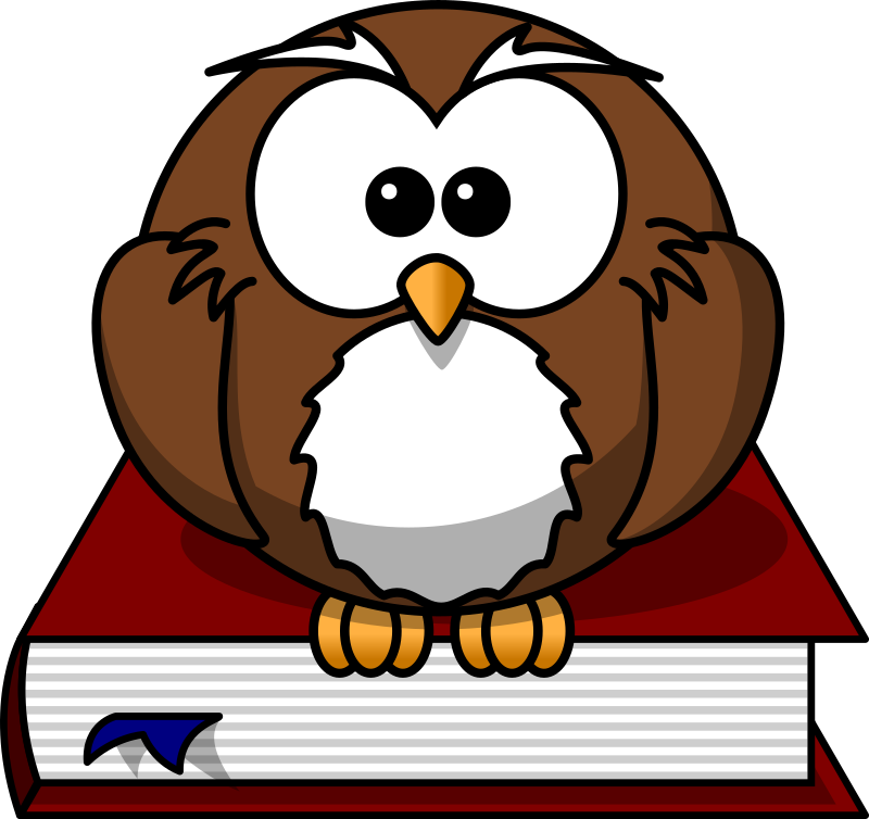 Cartoon owl sitting on a book by lemmling