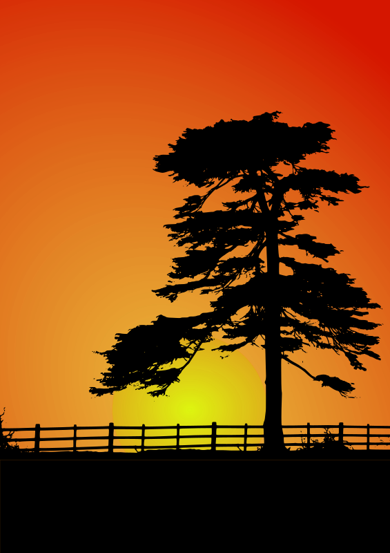 Cedar Sunset by netean - Tree traced from an original photograph, Fence and Vegetation from another photograph, Traced with Inkscape.