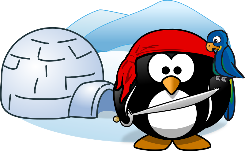 Pirate in Antarctica by Moini - A little pirate penguin in Antarctica, standing in front of his little home.