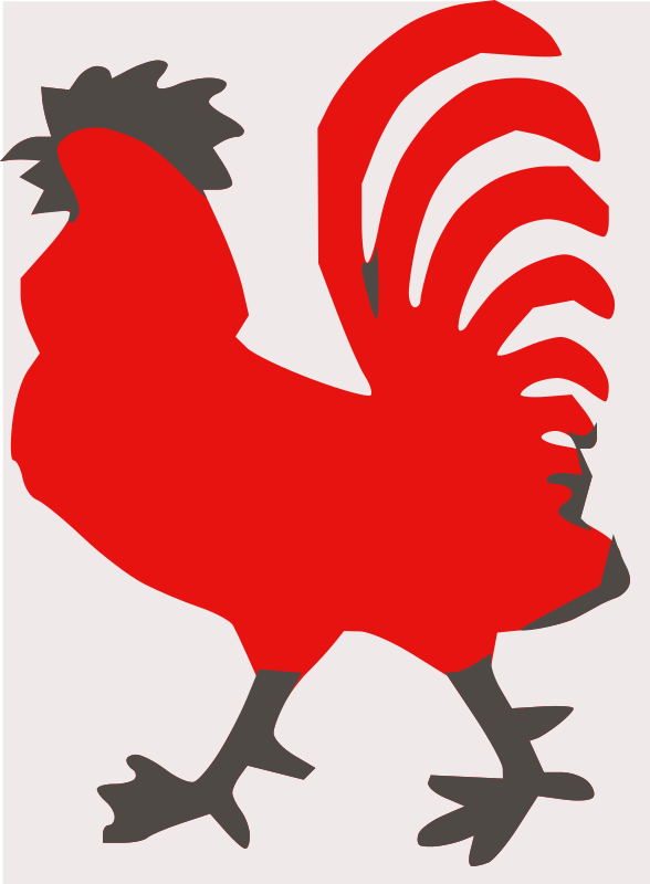 rooster by animals