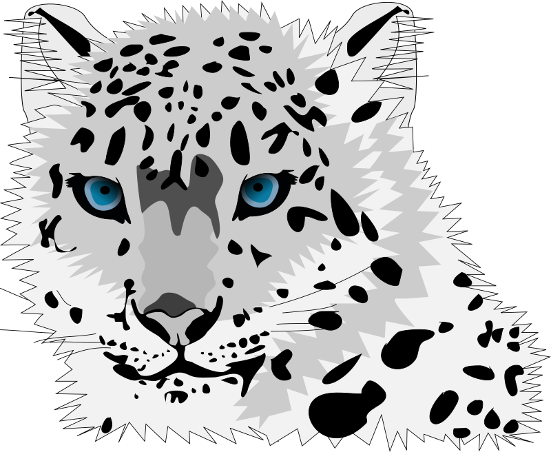 snow leopard by stilg4r - snow leopard staring at something