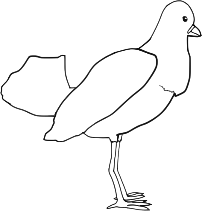 Bird (outline) by Child_of_Light - Bird outline made in GNU/Linux with Inkscape and Mypaint