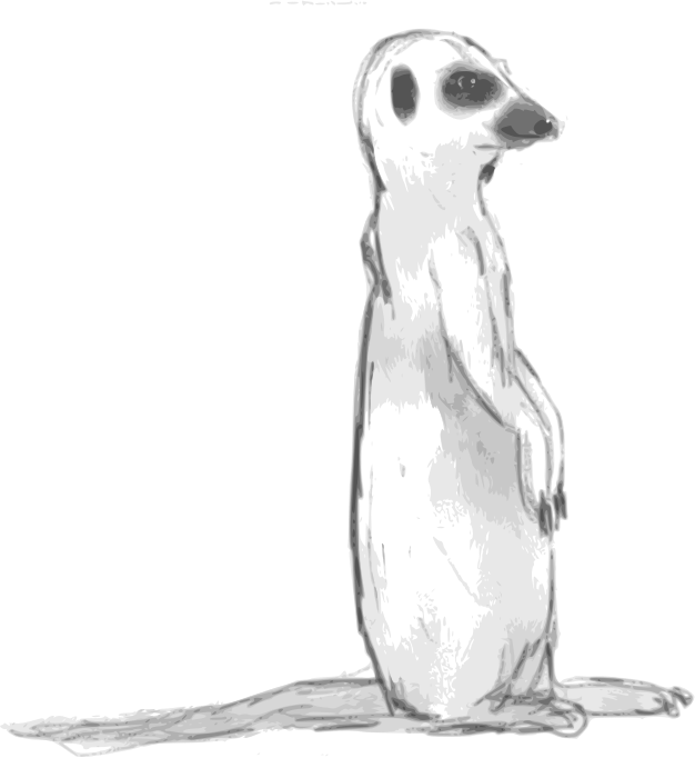 Meerkat Sketch by Child_of_Light - Meerkat Sketch made in GNU/Linux with Inkscape & Mypaint