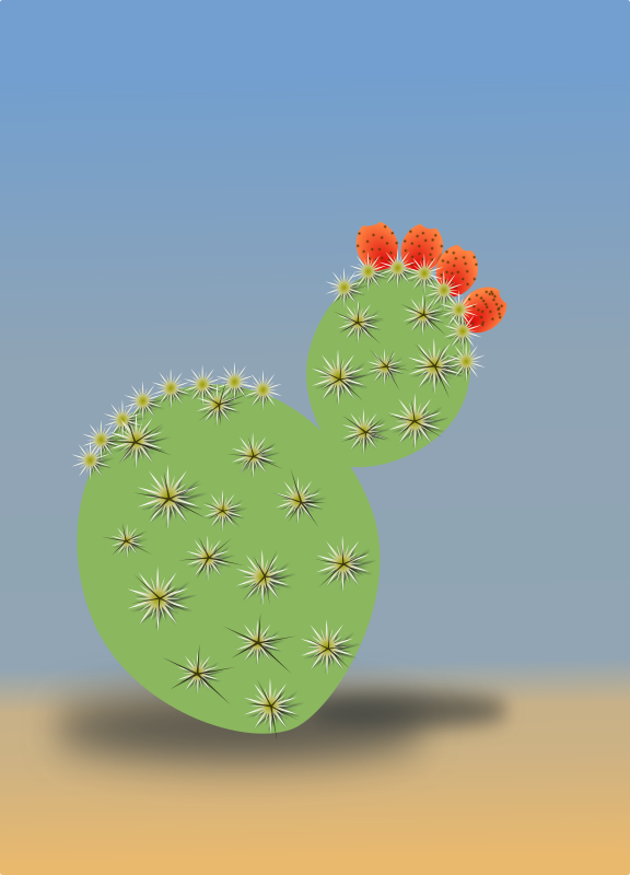 Cactus by tobias - A cactus in a desert.
