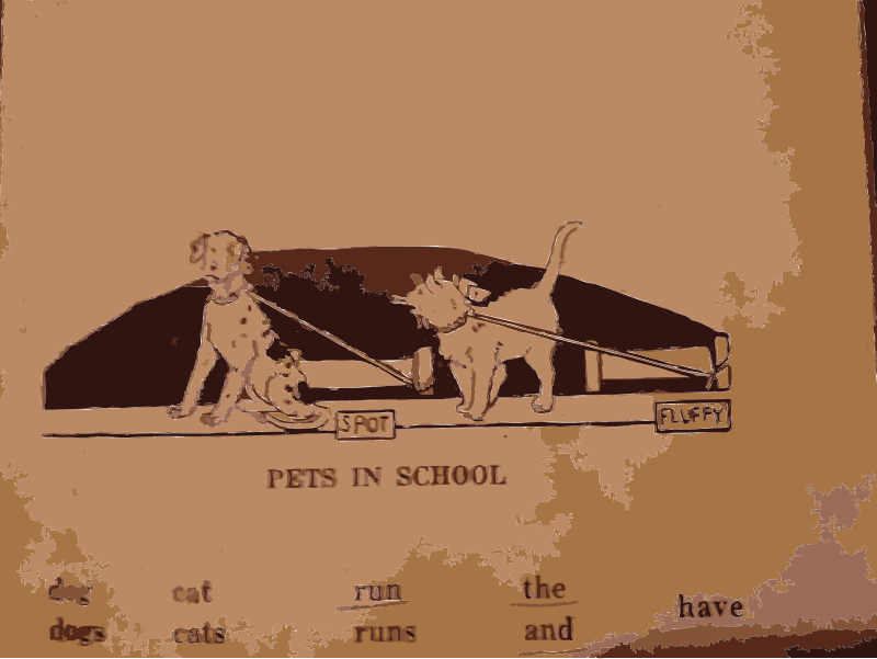 Pets in School by rejon - from a book