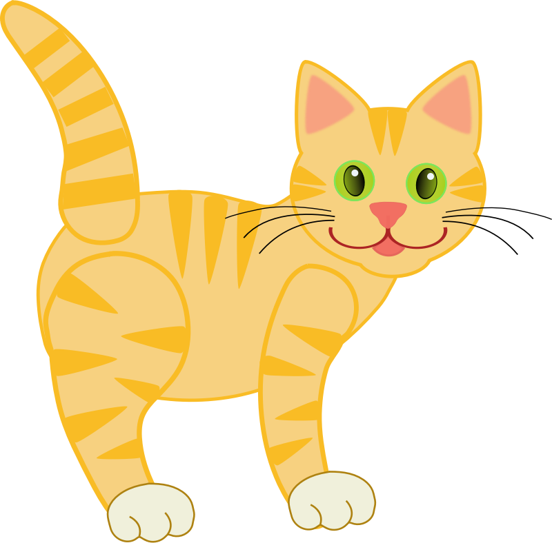 Yellow Tiger Cat by Deb53