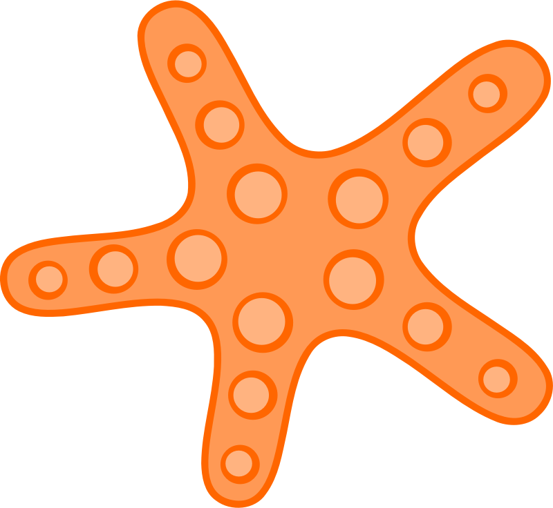 Orange Starfish by uroesch