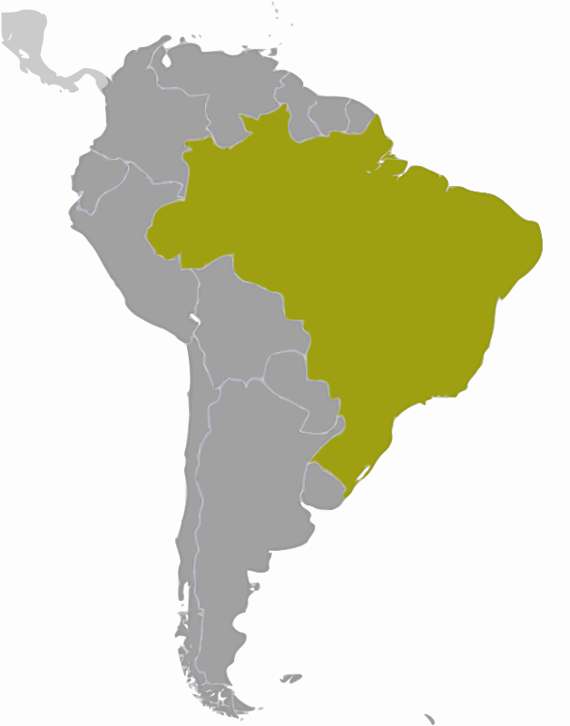 Brazil location by wpclipart - Map of Brazil location