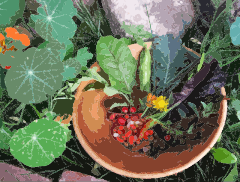 A bowl of flowers, berries and greens by aaronj - A wooden bowl with various berries, flowers and garden greens sitting amongst grass, rocks and flowers.