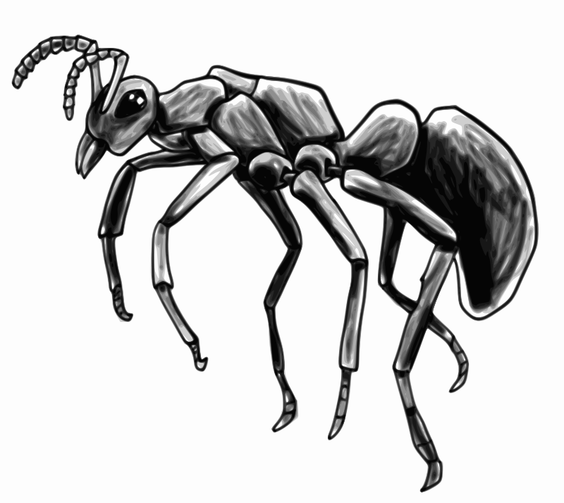 Ant by Child_of_Light - An Ant drawn in GNU/Linux using MyPaint using Pinta to resize and Inkscape to vectorize