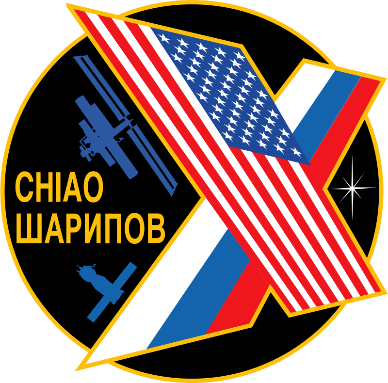 ISS Expedition 10 Patch by NASA