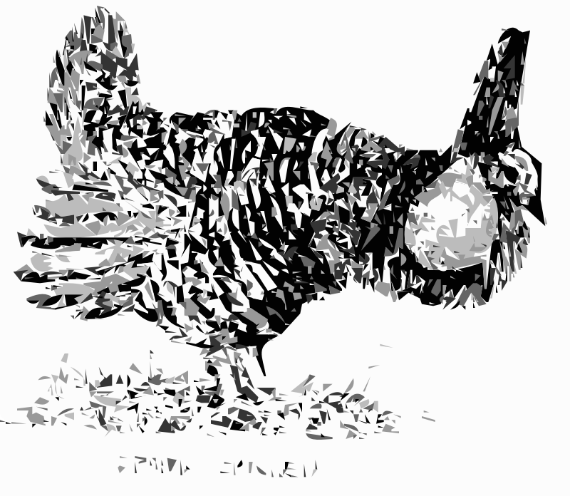 Prairie Chicken Bird by worldlabel - This public domain image comes from http://www.fws.gov/pictures/lineart/bobsavannah/uplandgamebirds.html and as of 2013-09-11 18:29:19 is this file, http://www.fws.gov/pictures/lineart/bobsavannah/graphics/uplandgamebird7.jpg. .fws.gov