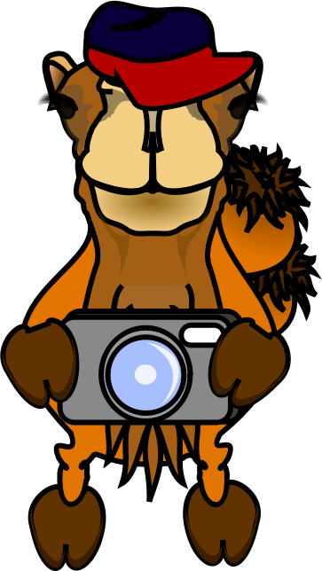 Comic Camel - Photographer by frankes