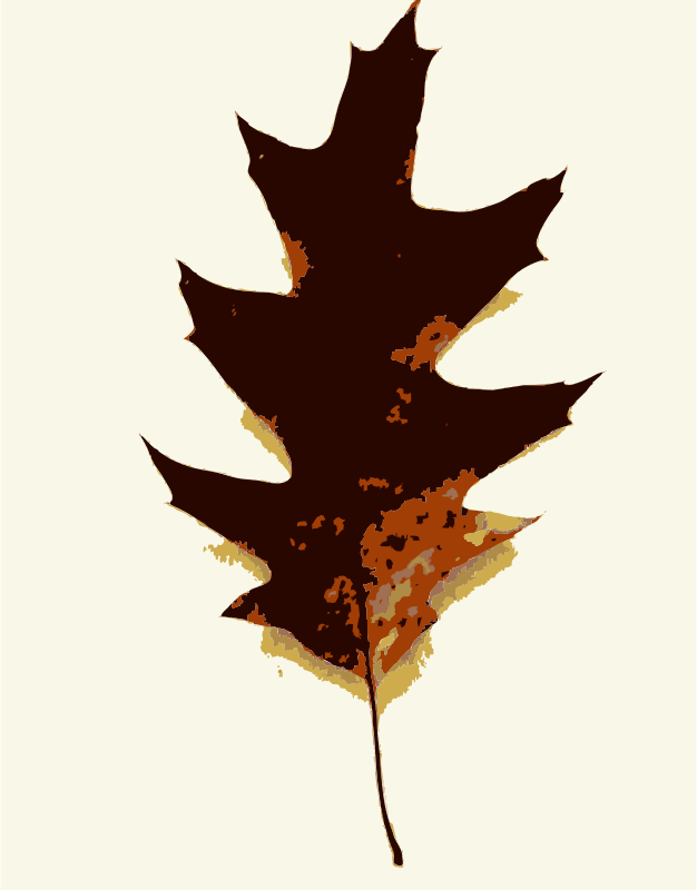 More fall tree leaves 2 by rejon