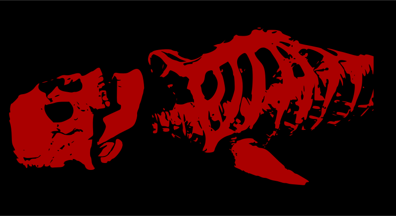 Red skeleton by liftarn