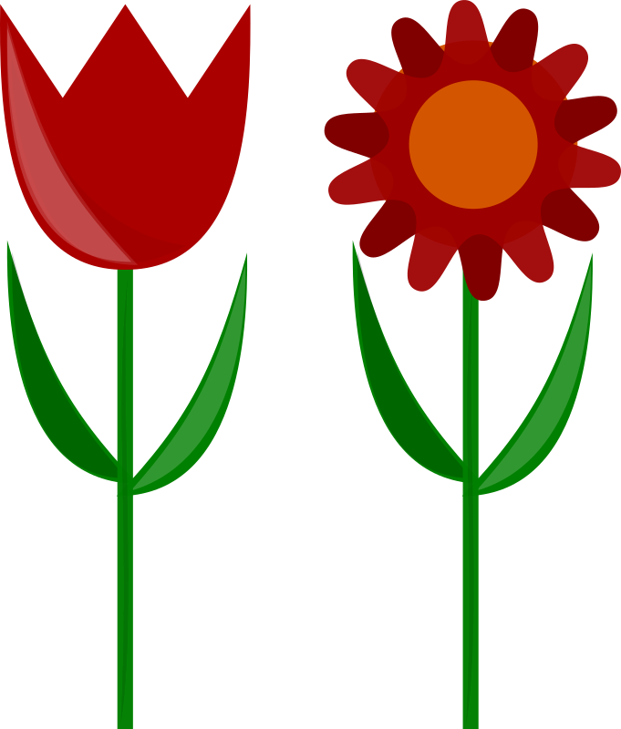 Flowers by szz - An image of two flowers