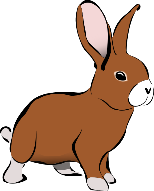 Brown Rabbit by PolyLingua - A drawing of a braun rabbit with white feet and a white nose