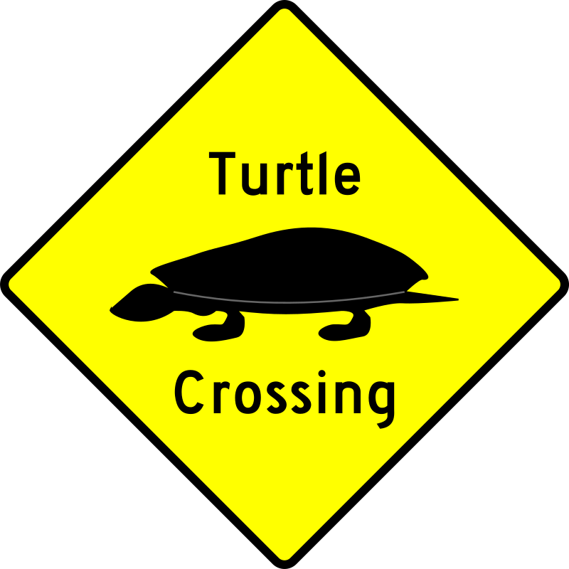 Caution - Turtle Crossing by algotruneman