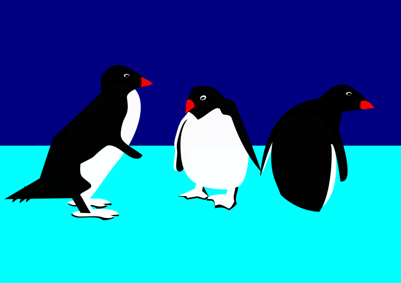 3 Pinguine auf Eis by user unknown - 3 little penguins, one from the side, one from the front, one from the back.
