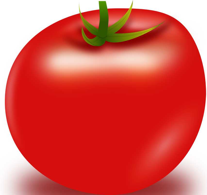 Vector Tomato by anonim76 - Red Tomato