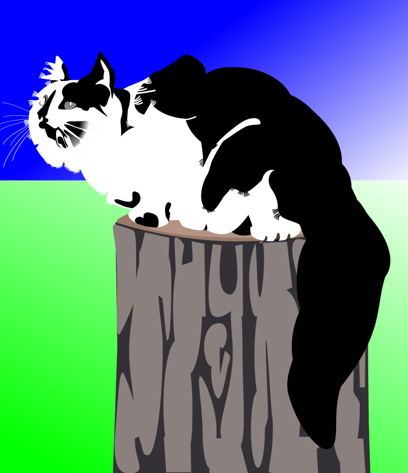 µ-Cat by user unknown - Longhaired cat µ, sitting on the rest of a tree, viewed from the side.