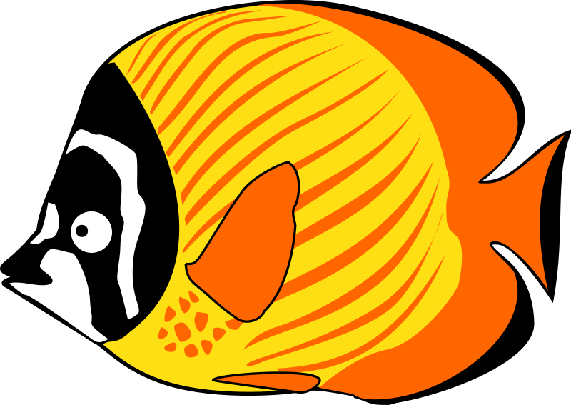 butterflyfish by ha1flosse - orange-yellow butterflyfish from actual comic - strip @ http://jelly.haifashion.eu