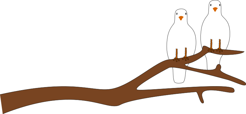Doves on a Branch for V Day by snydergd - Two doves sitting on a branch.  Created for a Valentine's Day calendar.