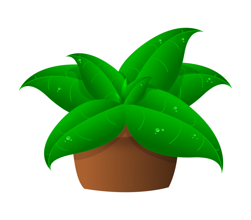 plants in pot by Arya wigunavadhana
