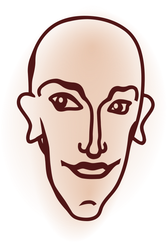 head by hrum - A bald head.