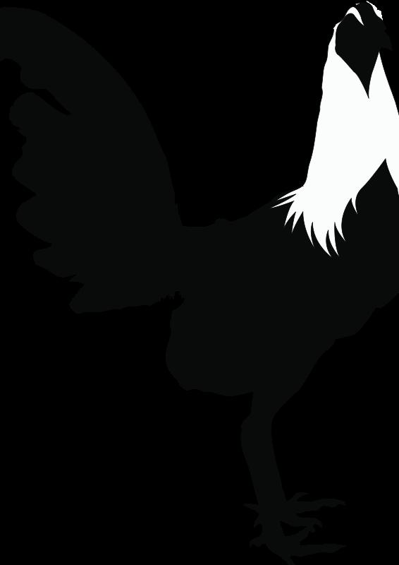 clipart roosterblackampwhite