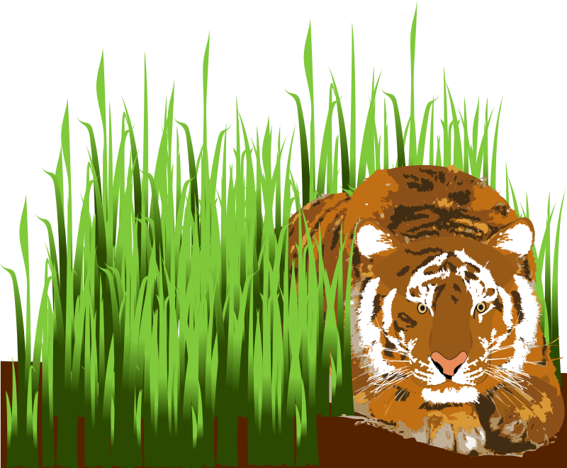 Tiger by presquesage - A tiger laying in the grass