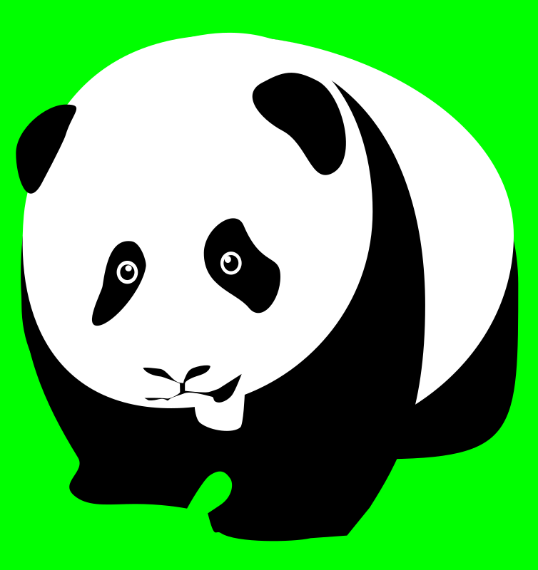 Panda bear by user unknown - Black and white panda bear from front