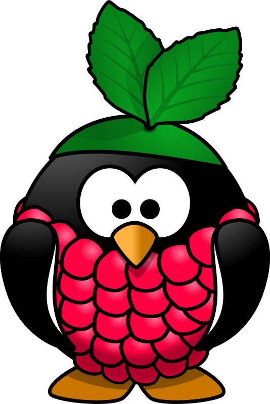 Raspberry penguin by Moini