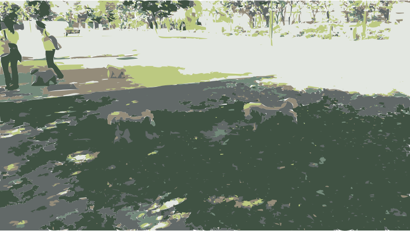Dogs Walking in Park by amadeog