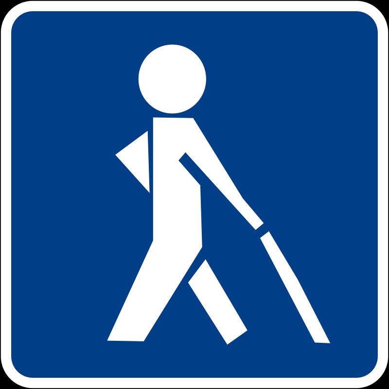 Visual impairment - Wikipedia
