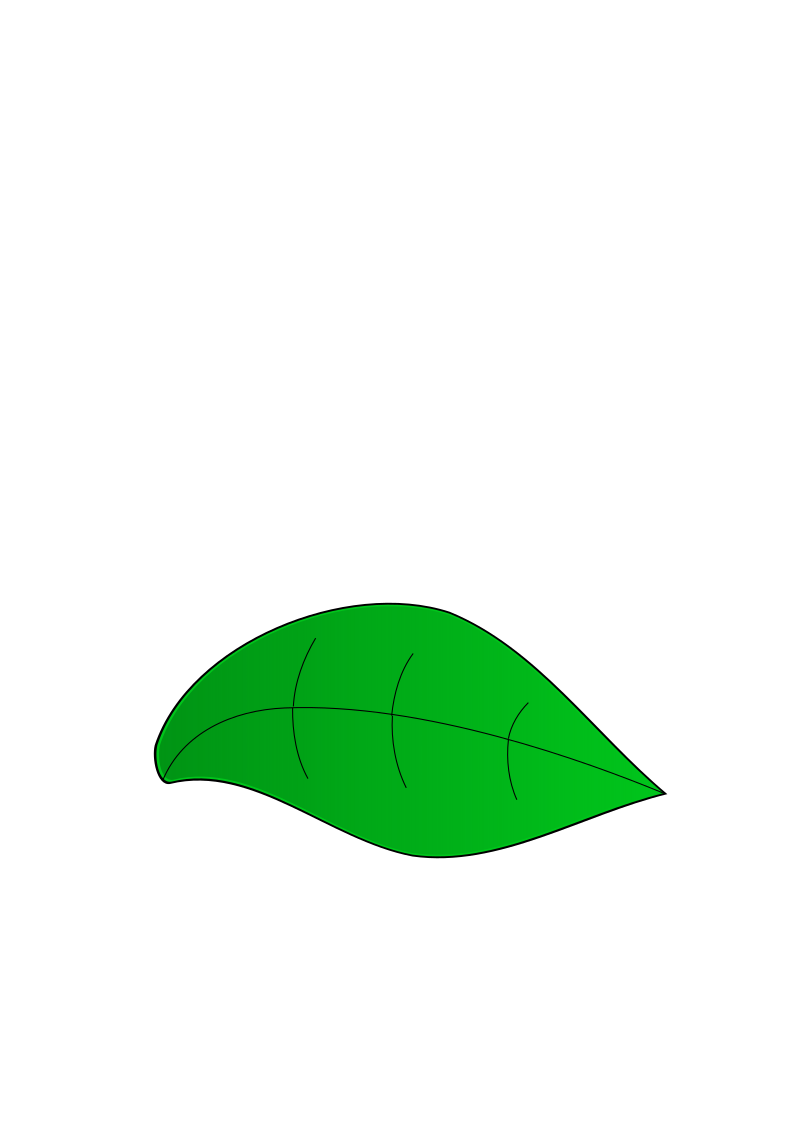 green leaf by joob - drawing of a leaf