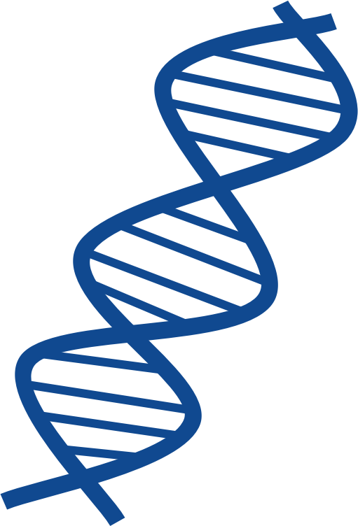 Clipart - DNA