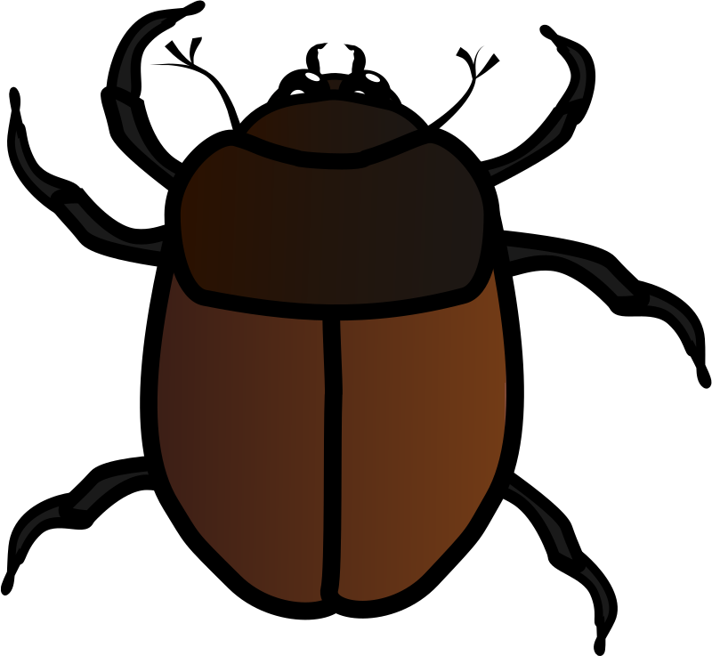 June Bug by jpneok