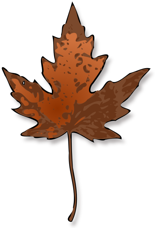 Maple Leaf by jimmiet - A maple leaf in it's full Fall glory.