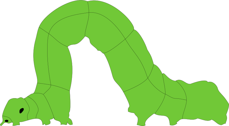 Clipart - Inchworm