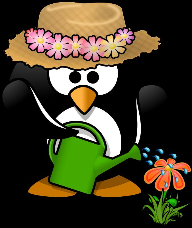 happy birthday penguin clip art