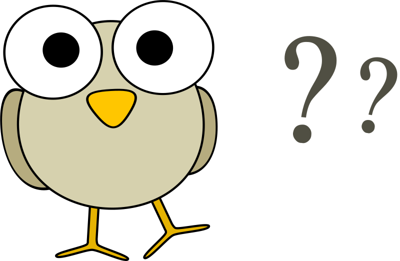 Grey bird with question marks by anarres - A funny grey cartoon bird with big googley eyes and some question marks.