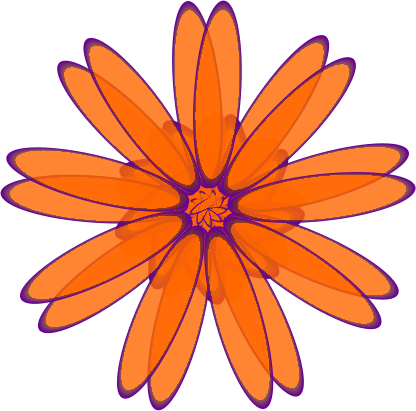 Orange Daisy by genolve - A realistic orange Daisy