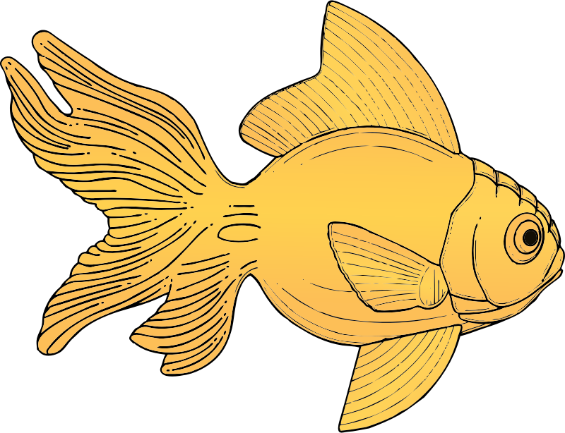 fish by johnny_automatic - a fanciful fish modified from a U.S patent drawing