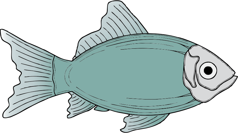 generic fish by johnny_automatic - a very generic fish from a U.S. patent drawing